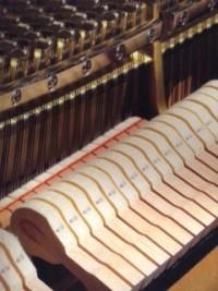 失敗しないピアノの選び方