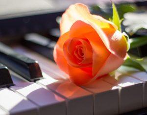 ピアノ演奏のプレゼント